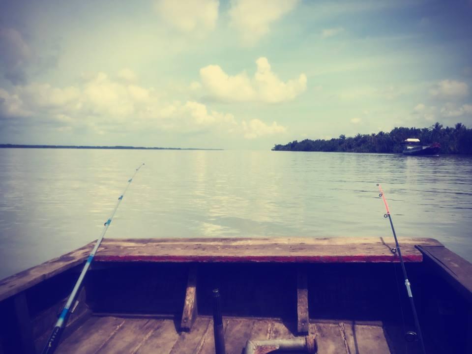 11407039 843827862360475 7350529244173475927 n Trải nghiệm thú vui câu cá tại Khu du lịch sinh thái Vàm Đồn - Bến Tre