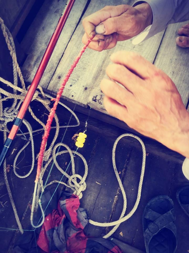 11535661 843827259027202 6810042259040082427 n Trải nghiệm thú vui câu cá tại Khu du lịch sinh thái Vàm Đồn - Bến Tre
